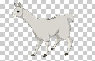 Sheep Cattle Goat Llama Horse PNG