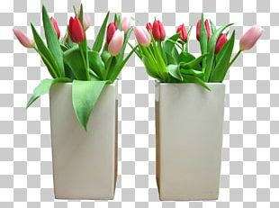 Flower Bouquet Tulip Rose PNG