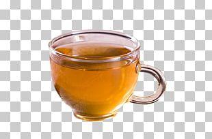 Barley Tea Earl Grey Tea Green Tea Mate Cocido PNG