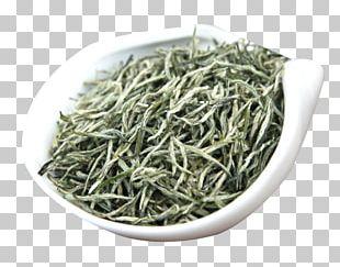 Gyokuro Nilgiri Tea Golden Monkey Tea Hu014djicha Bancha PNG