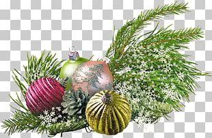 New Year Tree Christmas Ornament Holiday Santa Claus PNG