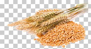 Cereal Grain Common Wheat Wheat Berry PNG