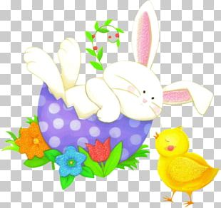 Easter Bunny Rabbit Hare Easter Egg Floral Design PNG