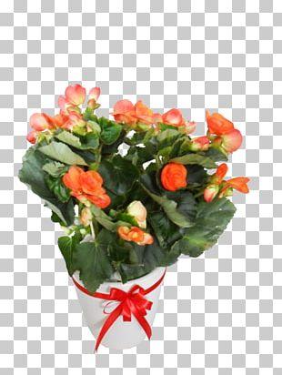 Garden Roses Flowerpot Floral Design Artificial Flower PNG