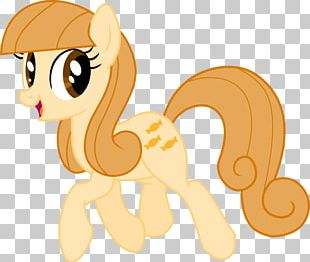 My Little Pony Butterscotch Pinkie Pie Derpy Hooves PNG