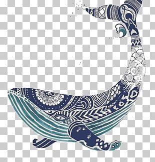 Blue Whale Art Illustration PNG
