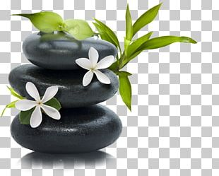 Lotion Stone Massage Day Spa PNG