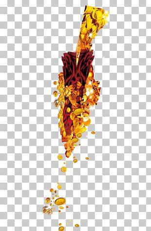 Graphic Design Text Leaf Illustration PNG