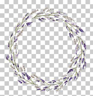 Lavender Violet PNG