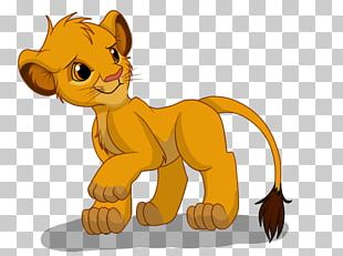 Lion Cat Tiger Drawing Simba PNG