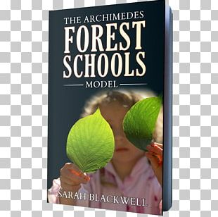 Forest School In Practice: For All Ages Forest Kindergarten PNG