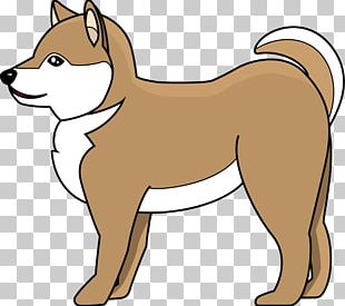 Dog Breed Shiba Inu Animal Snout PNG