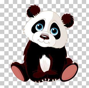 Chengdu Research Base Of Giant Panda Breeding Red Panda Bear PNG
