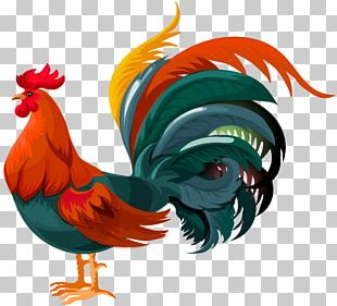Rooster Chicken PNG