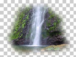 Waterfall Capesterre-Belle-Eau Les Fruits De Goyave Eau Garden PNG