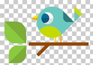 Bird Cartoon Euclidean PNG
