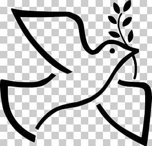 Peace Symbols Doves As Symbols Olive Branch PNG