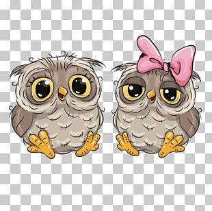 Owl Cartoon Drawing PNG