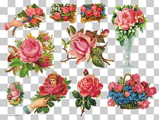 Garden Roses Flower Bouquet Vintage Clothing PNG