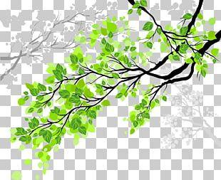Window Film Tree Wall Decal PNG