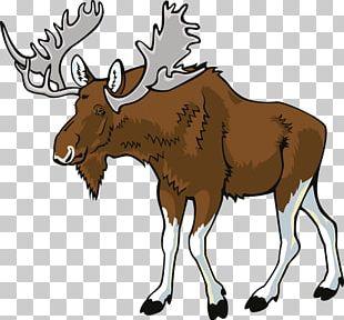 Deer Elk Moose PNG