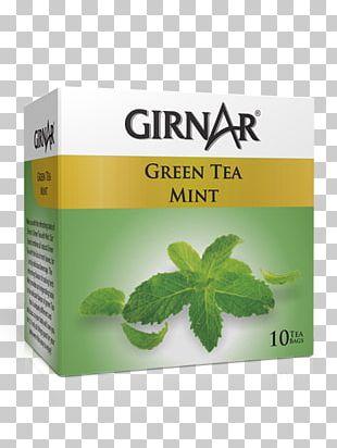 Green Tea Kahwah Masala Chai Iced Tea PNG