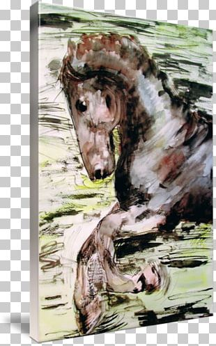Horse Watercolor Painting PNG