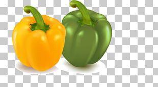 Vegetable Bell Pepper Chili Pepper Eggplant PNG
