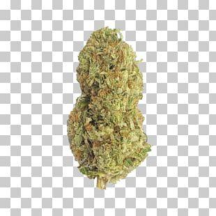 Gorilla Glue 4 Kush Cannabis Tetrahydrocannabinol PNG