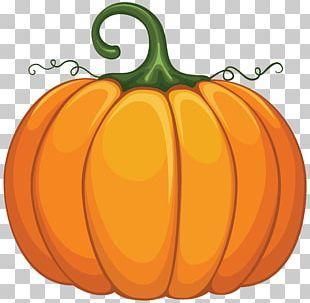 New Hampshire Pumpkin Festival PNG