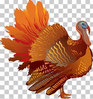Thanksgiving Sideview Turkey PNG