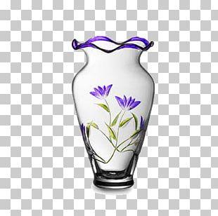 Vase Glass PNG