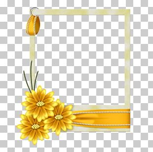 Frames Paper Flower Decorative Arts PNG