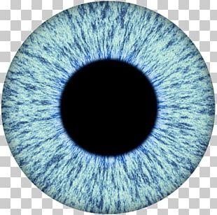 Human Eye Iris Pupil PNG