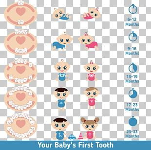 Teething Infant Deciduous Teeth Tooth Eruption PNG
