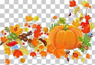 Thanksgiving Dinner Harvest Festival PNG