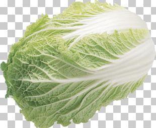 Lettuce Salad PNG