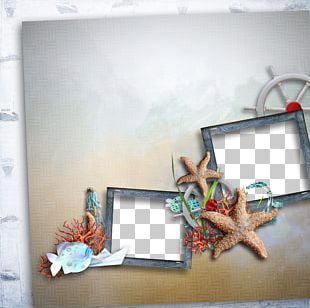 Frame Starfish Paper PNG