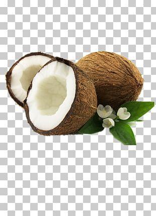 Coconut Oil Plant Milk Coconut Cream Fruit PNG