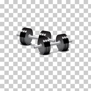 Dumbbell Barbell Weight Training Physical Exercise PNG
