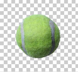 Sport Tennis Ball PNG