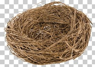 Bird Nest Straw NEST+m PNG