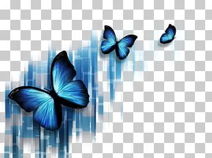 Butterfly Blue Stock Photography Microsoft PowerPoint Illustration PNG