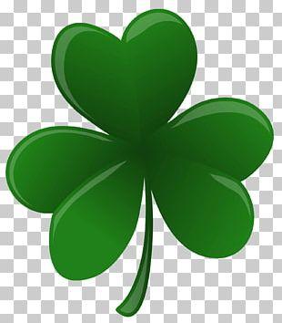 National ShamrockFest Saint Patrick's Day Drawing Four-leaf Clover PNG