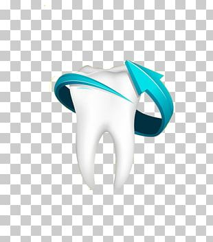 Human Tooth Teeth Cleaning Tooth Pathology Dentistry PNG