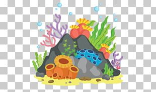 Coral Reef Portable Network Graphics PNG