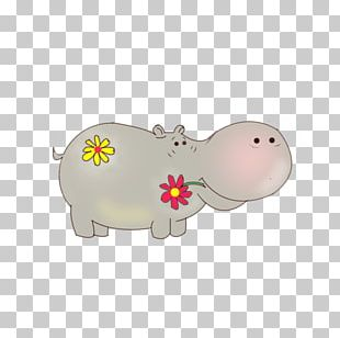 Hippopotamus Pig Snout PNG