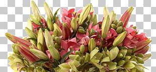 Floral Design Cut Flowers Artificial Flower Floristry PNG