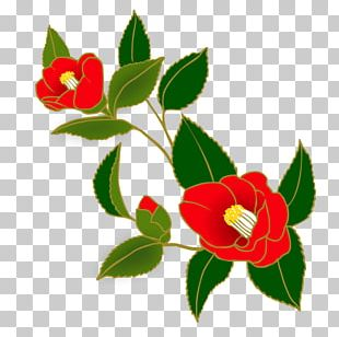 T-shirt Portable Network Graphics Japanese Camellia Flower PNG