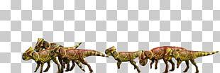 Microceratus Jurassic Park Ceratopsia Suchomimus Metriacanthosaurus PNG